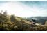 "VOTEC VC Comp - Tour/Trail Hardtail 29"" - green-yellow"